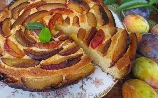 Пирог со сливами — вкусный рецепт в духовке