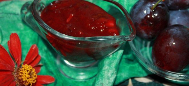 Домашний кетчуп из слив с острым перцем