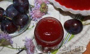 Яблочно-сливовое пюре
