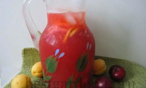 Домашний лимонад из сливы