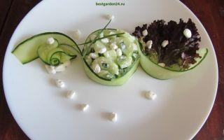 Салат из огурцов, зернистого творога и зеленого лука