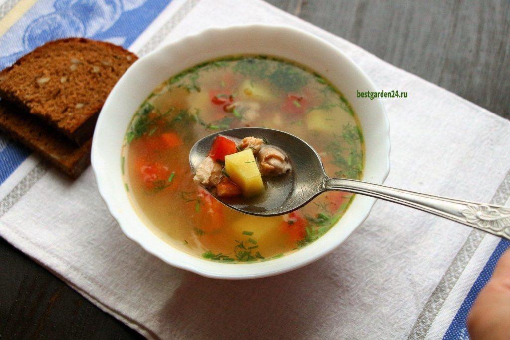 Рыбный суп с помидорами и чесноком