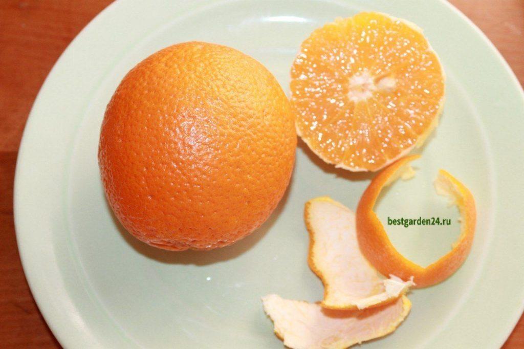 Апельсин для салата с рукколой