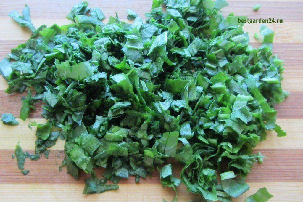 Зелень для супа из щавеля