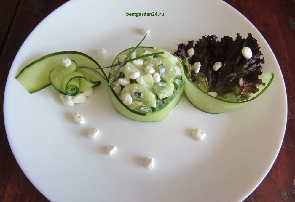 Салат из огурца, творога и лука