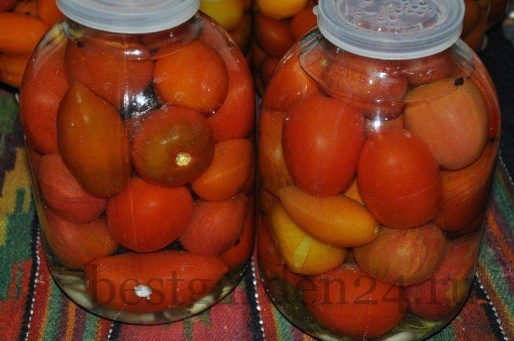 Квашенные помидоры на зиму