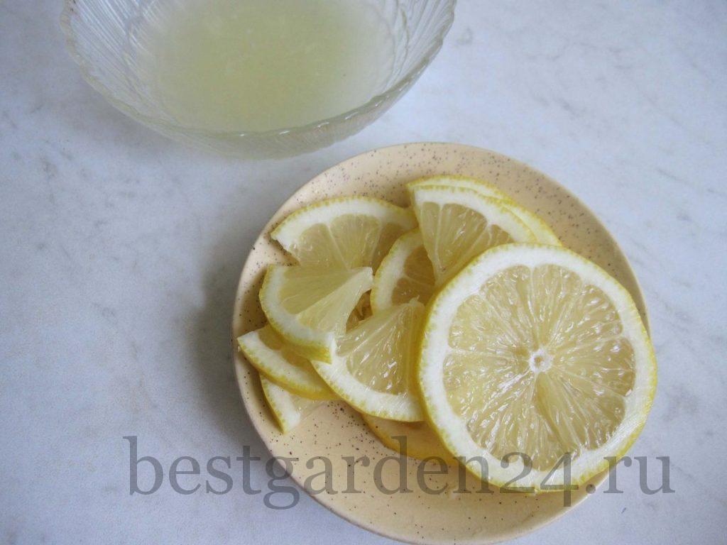 Лимон для лимонада