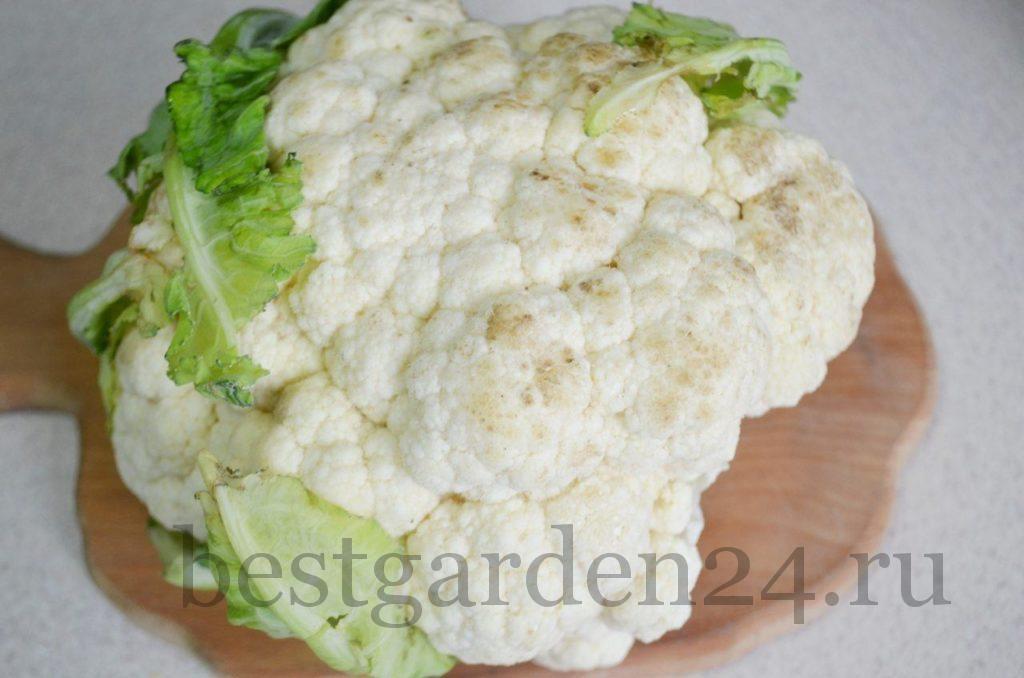 Вилок цветной капусты на заморозку