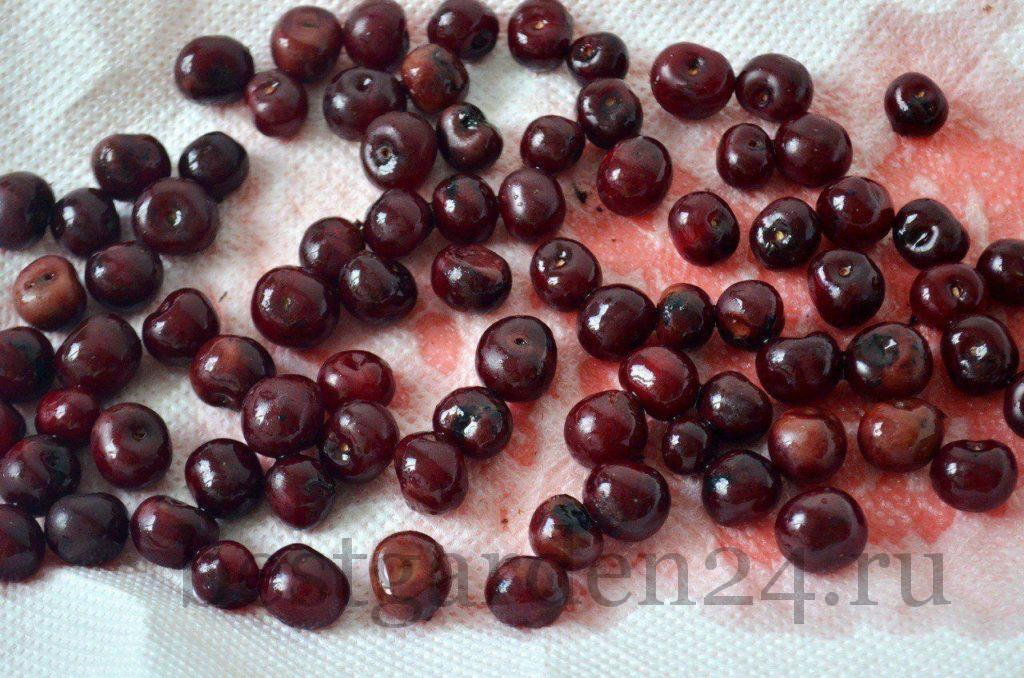 Ягоды вишни для заморозки