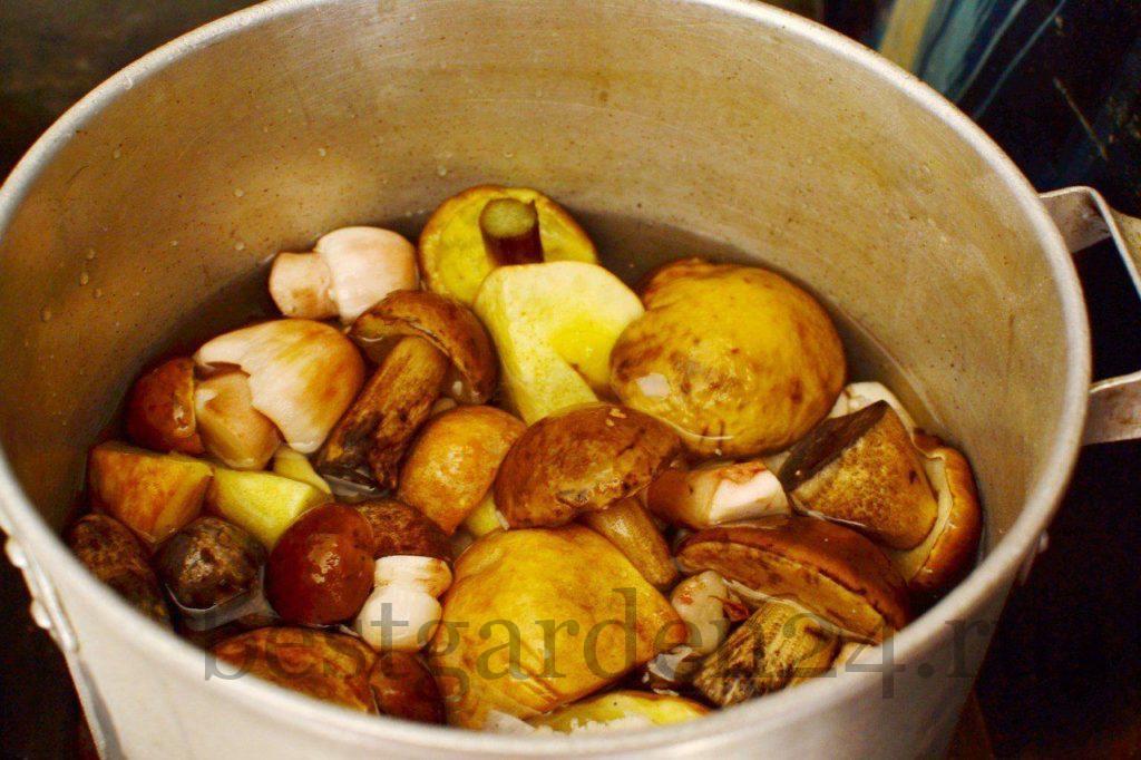 Отваривание грибов