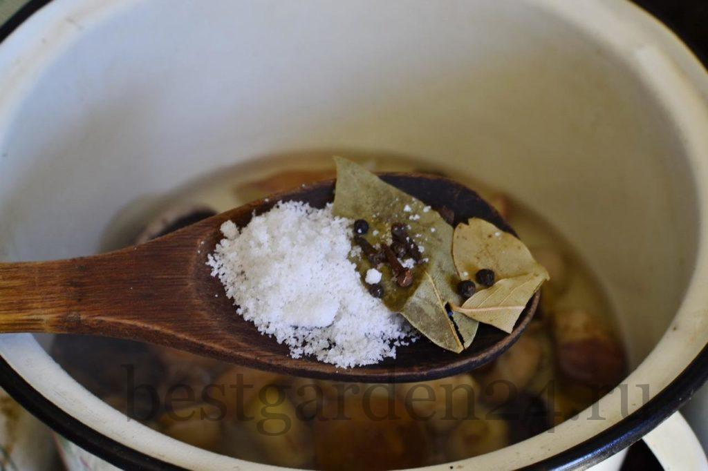 Грибы, соль и специи