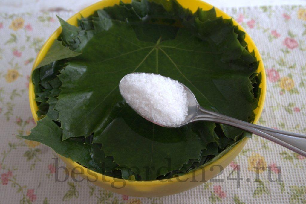 Соль на листьях винограда