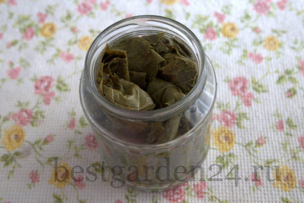 Виноградные листья трубочкой в банке