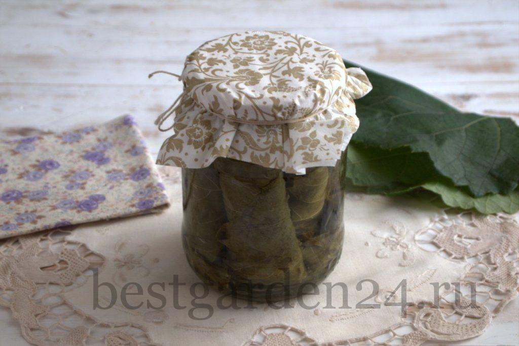 Соленые виноградные листья для долмы, соте и фаршировки